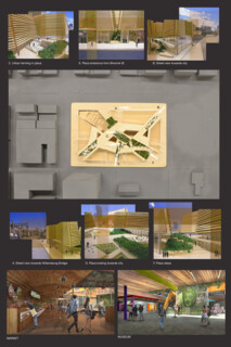 TIMBER IN THE CITY: Urban Habitat Competition